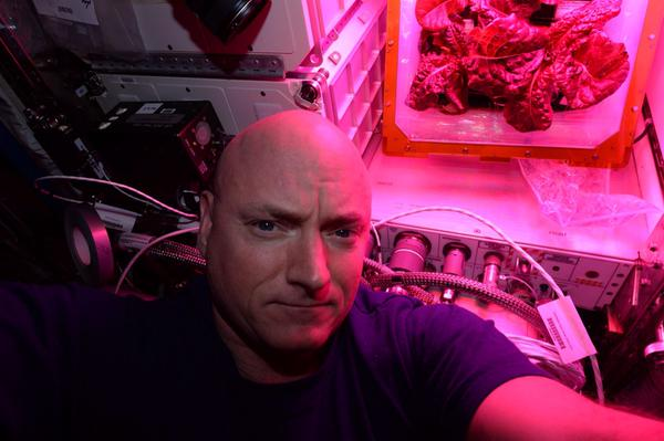 NASA astronaut Scott Kelly poses with lettuce grown aboard the International Space Station. Credit: NASA