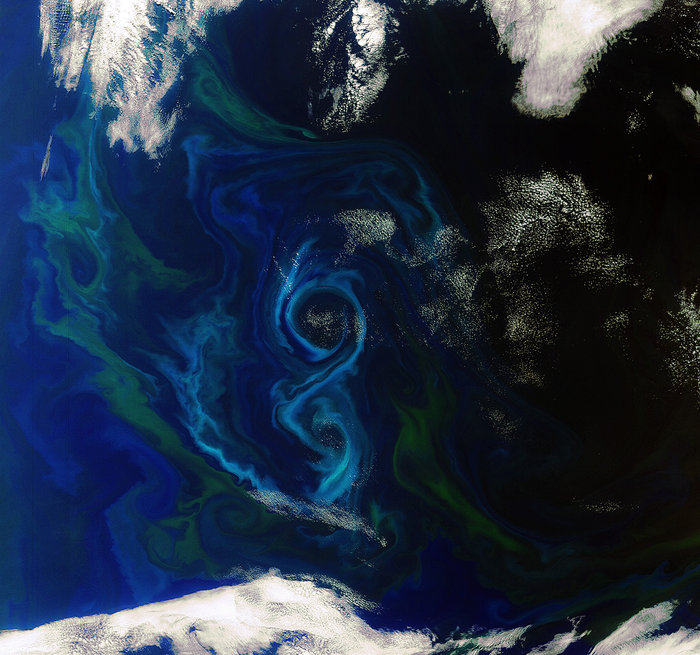 An instrument on Europe's Envisat satellite captured this view of a phytoplankton bloom swirling in a a figure-of-8 in the South Atlantic Ocean east of the Falkland Islands. Sentinel 3A's ocean color sensor will resume observations of such phenomena after Envisat's mission ended in 2012. Credit: ESA